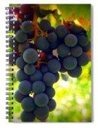 Vine Purple Grapes  Spiral Notebook