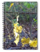 Vines On The Fence Spiral Notebook