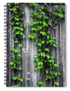 Vines On The Side Of A Barn Spiral Notebook