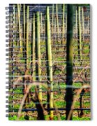 Vines Poles 22649 Spiral Notebook