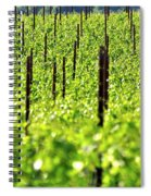 Vineyard 24056 Spiral Notebook