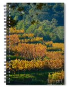 Vineyard Fall Spiral Notebook