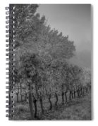 Vineyard Fog Spiral Notebook