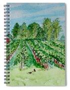 Vineyard Of Ontario Canada 1 Spiral Notebook