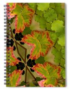 Vineyard Quilt Spiral Notebook