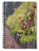 Vineyard View Spiral Notebook