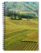 Vineyards Below Zellenberg France 1 Spiral Notebook