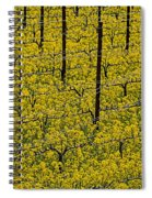 Vineyards Full Of Mustard Grass Spiral Notebook