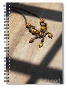 Vintage Amber Necklace Spiral Notebook