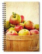 Vintage Apple Basket Spiral Notebook