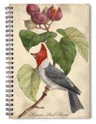 Vintage Bird Study-d Spiral Notebook