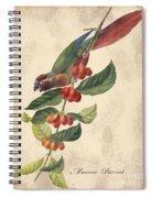 Vintage Bird Study-h Spiral Notebook
