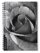 Vintage Cracked Rose Spiral Notebook