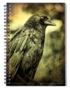 Vintage Crow Spiral Notebook