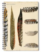 Vintage Feather Study-jp2085 Spiral Notebook