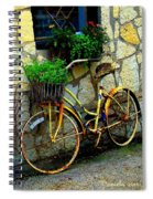 Antique Store Hay Rake And Bicycle Spiral Notebook