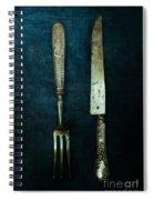 Vintage In Blue Spiral Notebook