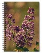 Vintage Lilac Spiral Notebook