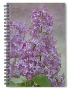 Vintage Lilacs Spiral Notebook