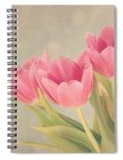Vintage Pink Tulips Spiral Notebook