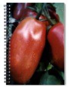 Vintage Romas Spiral Notebook