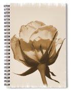 Vintage Rose 2013 Spiral Notebook