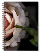 Vintage Rose  Spiral Notebook