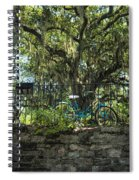 Vintage Schwinn And Ancient Live Oak Spiral Notebook