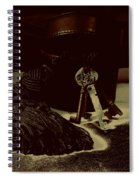 Vintage Skeleton Keys _tassle Nbr 3 Spiral Notebook
