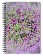 Violet And Green Spiral Notebook