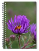 Violet Breeze Spiral Notebook