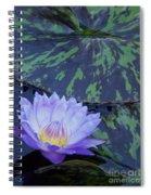Violet Lily Spiral Notebook