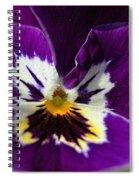 Violet Macro Spiral Notebook