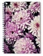 Violet Mums Spiral Notebook