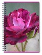 Violet Red Rose Spiral Notebook