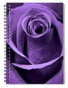 Violet Rose Spiral Notebook