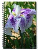 Violet Striped Iris Spiral Notebook