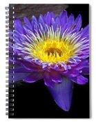 Violet Waterlily Spiral Notebook