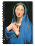 Virgin Of The Adoption Spiral Notebook