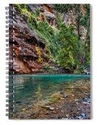 Virgin River Zion National Park Utah Spiral Notebook