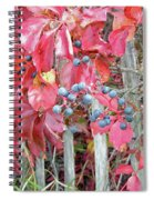 Virginia Creeper Fall Leaves And Berries Spiral Notebook