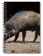 Visayan Warty Pig Spiral Notebook