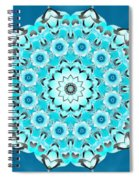 Vishuddha Severity Spiral Notebook