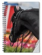 Visions Of Holland Spiral Notebook