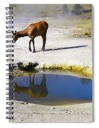 Visitor At West Thumb Basin Spiral Notebook