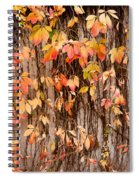 Vitaceae Family Ivy Wall Abstract Spiral Notebook