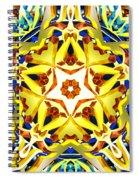 Vital Conjunction Spiral Notebook