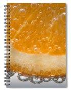 Vitamin C Spiral Notebook