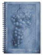 Vitis Cyanotype Spiral Notebook
