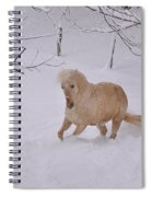 Viva Zapata Contratercero Dances In The Snow Spiral Notebook
